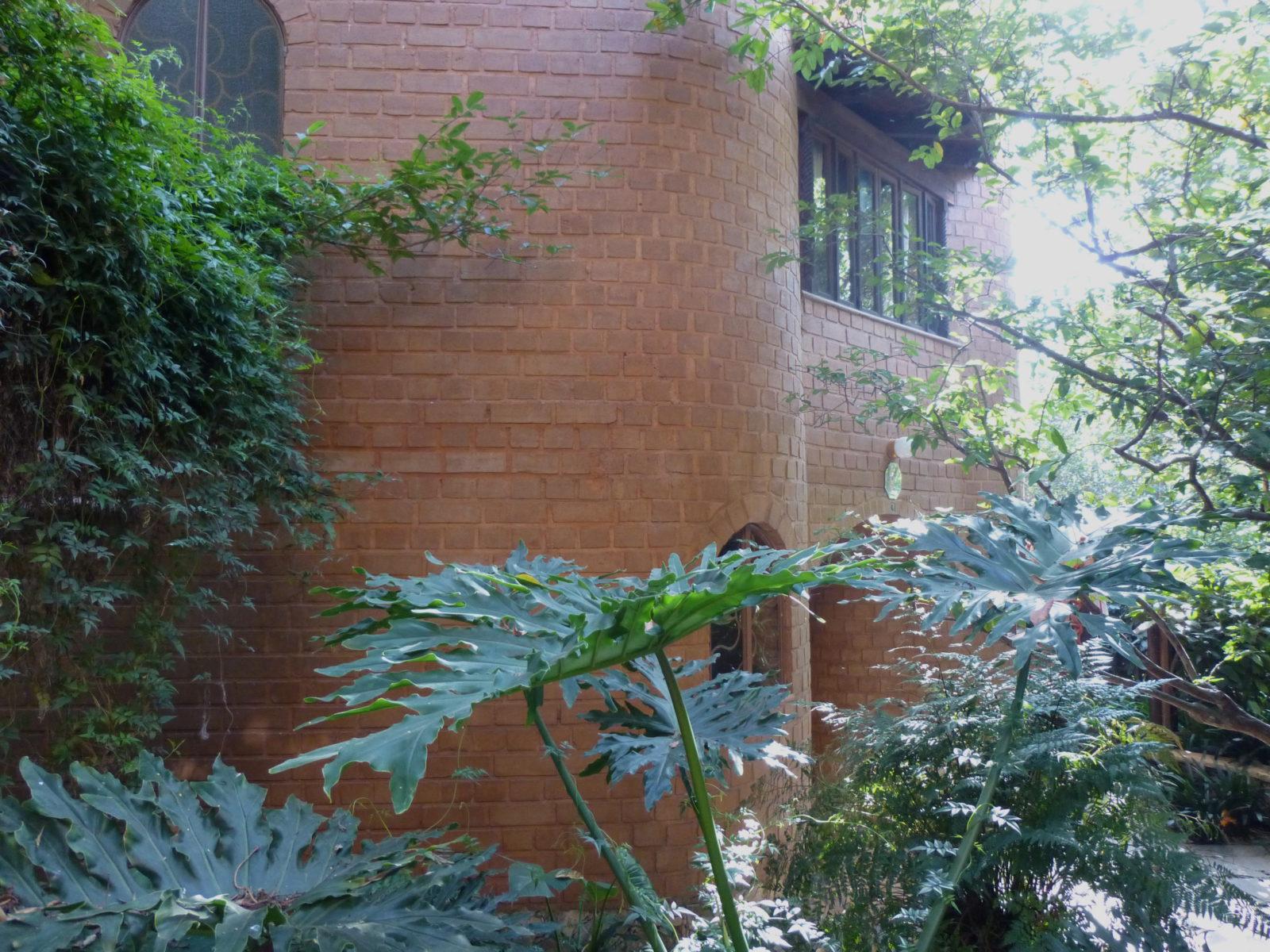 Leemstenen met cactus emulsie