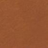 Kasseler bruin